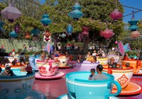 nestiut despre Disneyland
