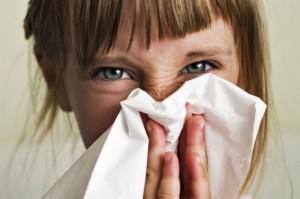 alergie animale