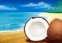 daruri cocos